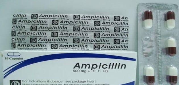 متى يبدأ مفعول دواء أمبيسيللين Ampicillin وأهم التحذيرات